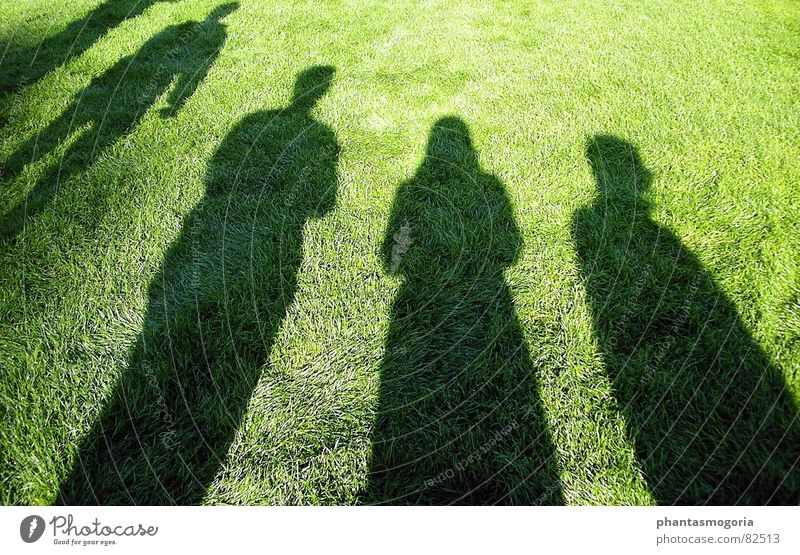 my shadows Summer Football pitch Assembly Playing Shadow Lawn Sun Date