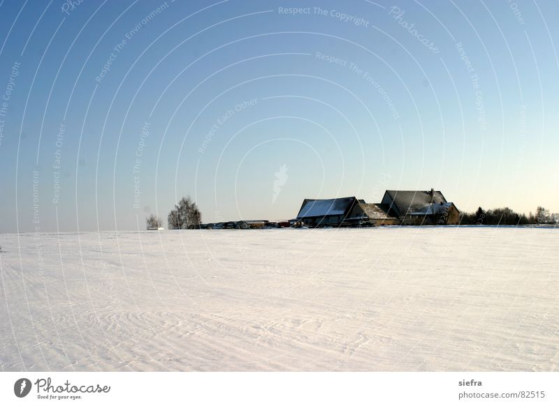 Sky Blue Winter House (Residential Structure) Loneliness Far-off places Cold Snow Ice Horizon Gloomy Longing Agriculture Saxony Remote