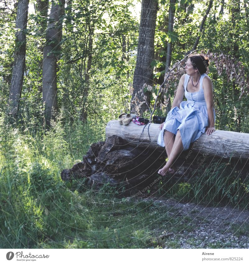 Human being Woman Vacation & Travel Blue Green Summer Tree Relaxation Calm Landscape Forest Adults Feminine Gray Wood Meditative