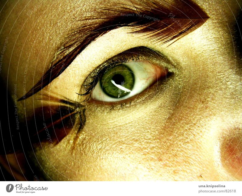 Woman Eyes Perspective Soft Feather Audience Flirt Snapshot Marvel Focal point Pupil Fix Iris Saucer-eyed