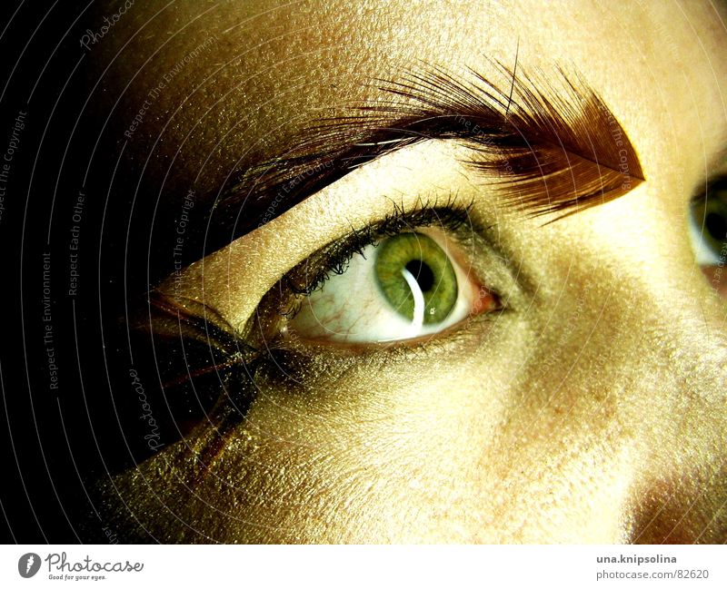 springs II Pupil Light Fix Iris Eyes Marvel Perspective Face Vantage point Insight Fleeting glance Flirt Saucer-eyed Soft Woman Feather Looking Reflection