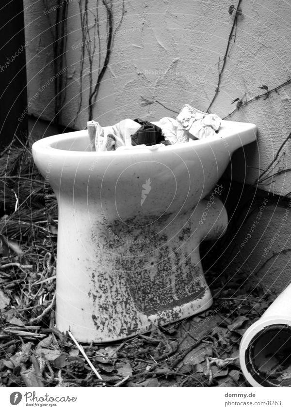 Outdoor toilet Black Obscure Toilet Bowl Black & white photo wise Exterior shot