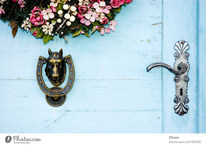 cowardly/courageous Above Horse's head Door handle Flower Wreath Keyhole Rural Country house Entrance Closed Living or residing Blue Open Wooden door