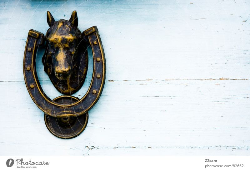knock, knock II Horseshoe Door handle Horse's head Rural Country house House (Residential Structure) Entrance Closed Bronze Glittering Wood Wooden door Line