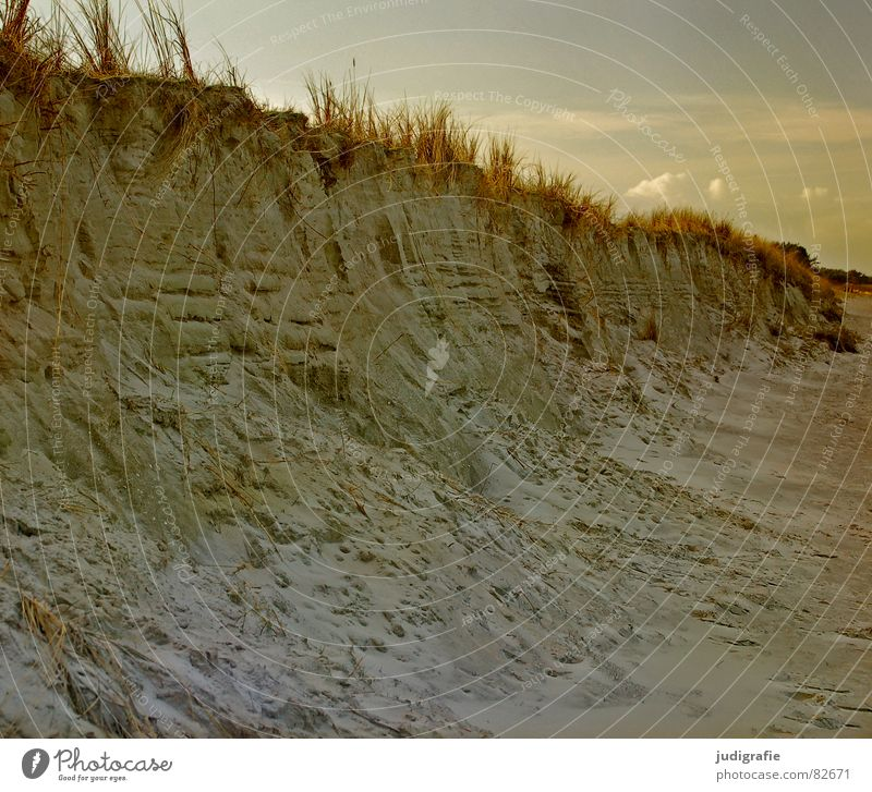 Nature Sky Ocean Winter Clouds Cold Grass Lake Landscape Coast Beach dune Baltic Sea Beige Darss Cliff Prerow
