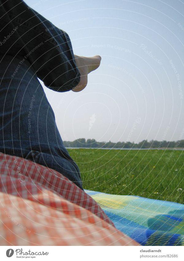 Sky Green Summer Vacation & Travel Relaxation Meadow Grass Dream Feet Lake Horizon Lawn Break Vantage point Lie Leisure and hobbies