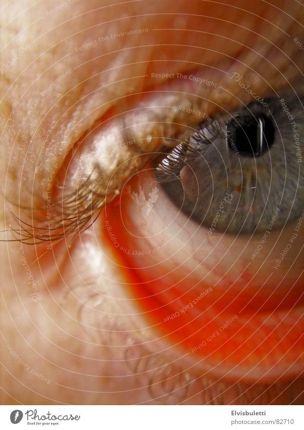 Eyes Eyelash Lens