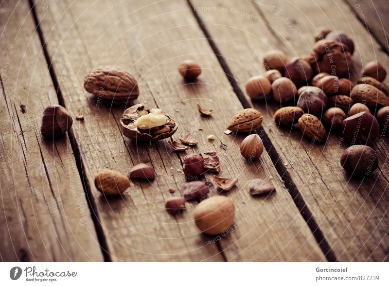 Fresh nuts Food Nutrition Healthy Brown Hazelnut Walnut Almond Wooden table Food photograph Christmas & Advent Colour photo Subdued colour Interior shot