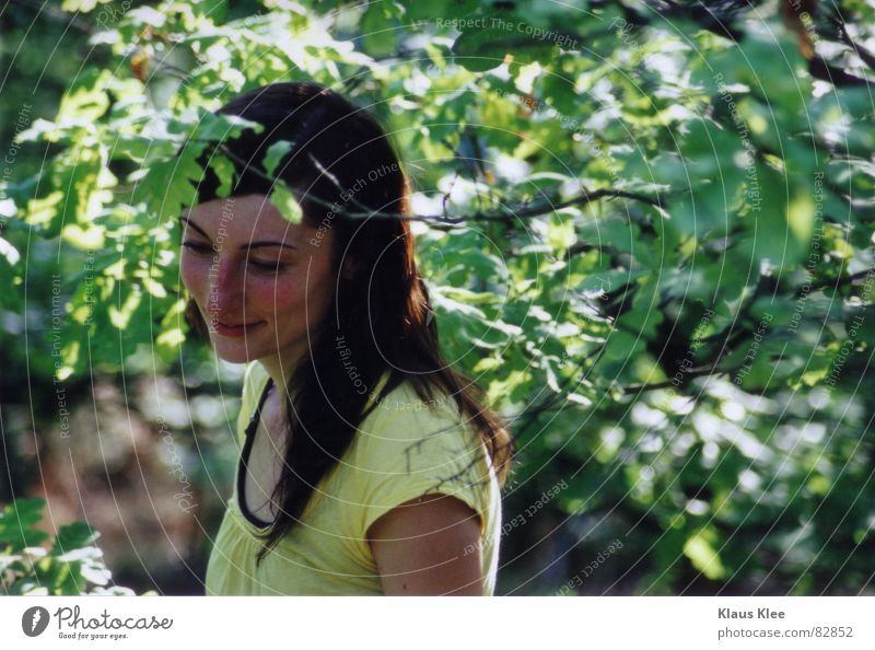 Woman Tree Summer Forest Laughter Twig Shame Human being