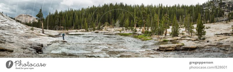 Fly fishing in the Yosemite wilderness. Adventure Hiking Man Adults 1 Human being 30 - 45 years River Discover challenge daring exploration fisherman gutsy