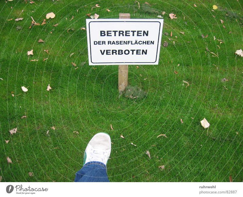 Trespassing forbidden! Sated Green Arrangement Lawn Footwear Poison Meadow Unnatural Bans Dangerous Narrow Limitation Exterior shot Garden Park green-striped