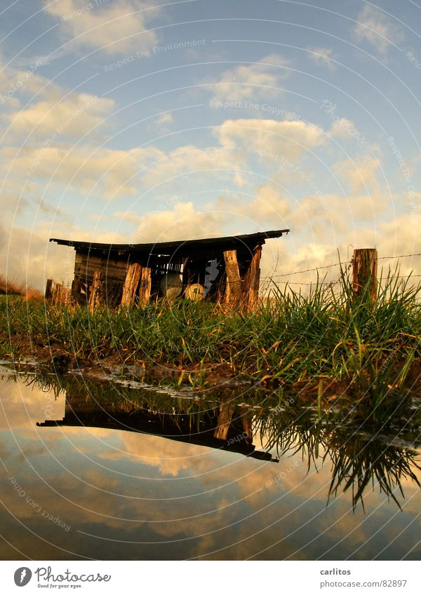 tea cottage Shed Pavilion Barbed wire Horizon Fence Barn Meadow Footpath Puddle Reflection Clouds Dramatic Wind Passion Middle Symmetry White balance 2