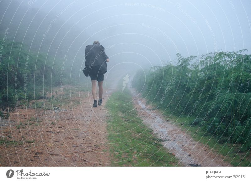 Hikers in the fog Brazil Hiking Fog Fog bank Gray Loneliness Aimless Backpack Shroud of fog Autumn South America Estrada Real backpacker migratory bird wanderer