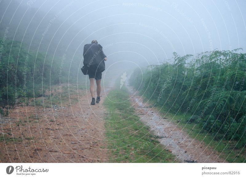Loneliness Autumn Gray Hiking Fog Brazil Backpack South America Aimless Shroud of fog Fog bank