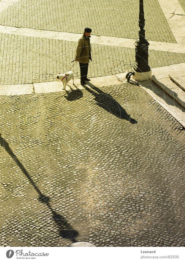 Man with dog Animal Sunrise Town Light Human being Silhouette Flare folk pet Glittering lantern blockhead cobblestone sunshine street sunlight