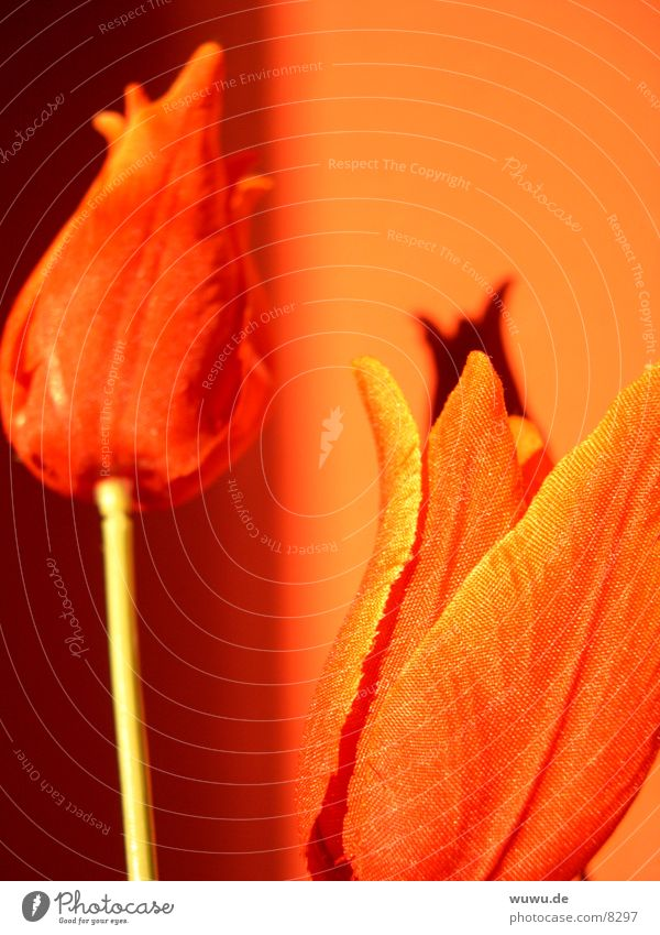 Red Orange Cloth Tulip Flower