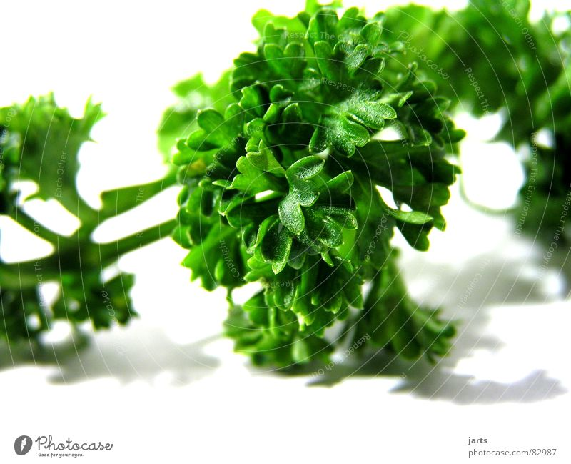 Parsley I Herb garden Herbs and spices Kitchen Green Cooking Sense of taste Decoration Vegetarian diet Gastronomy Vegetable pertersily Garden jarts