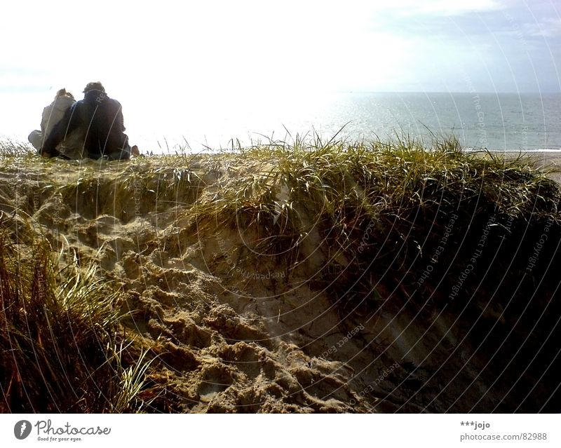 Woman Man Beautiful Sky Sun Ocean Blue Summer Beach Vacation & Travel Love Yellow Grass Happy Couple Sand