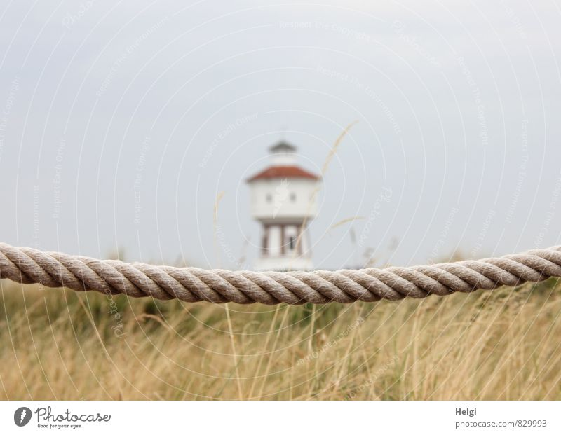 900 soul dangle... Vacation & Travel Tourism Summer Summer vacation Environment Nature Landscape Plant Sky Beautiful weather Grass Coast North Sea Island