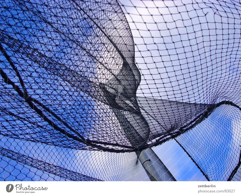 Sky Blue White Clouds Black Playing Wind Net Fence Connection Gale Paradise Alcohol-fueled Escape Grating High voltage power line