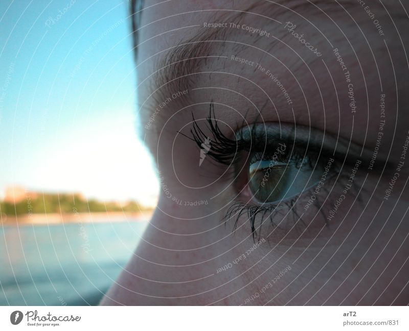 Rhine Eye Woman Close-up Eyes Side Facial expression