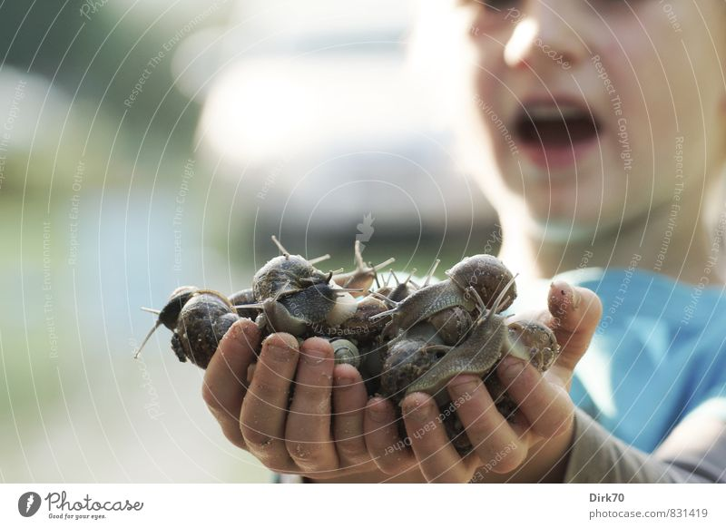 Fat booty! Child with both hands full of snails. Finger food Adventure Living or residing Garden Parenting Boy (child) Infancy Hand 1 Human being 3 - 8 years