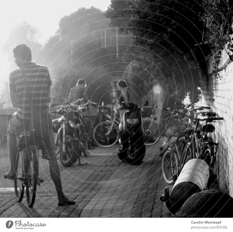 Human being Summer Beach Bicycle Fog Hamburg Bushes Cycling Smoke Traffic infrastructure Dusk Elbe Dugout Summer evening Summer's day Elbstrand