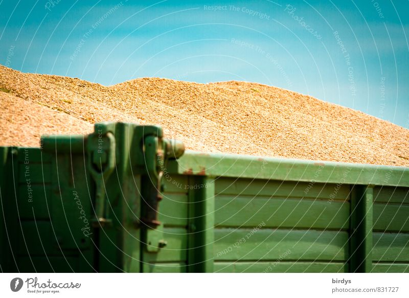 fat harvest Nutrition Grain harvest Wheat grain Agriculture Forestry Cloudless sky Summer Beautiful weather Trailer Healthy Rich Blue Yellow Green