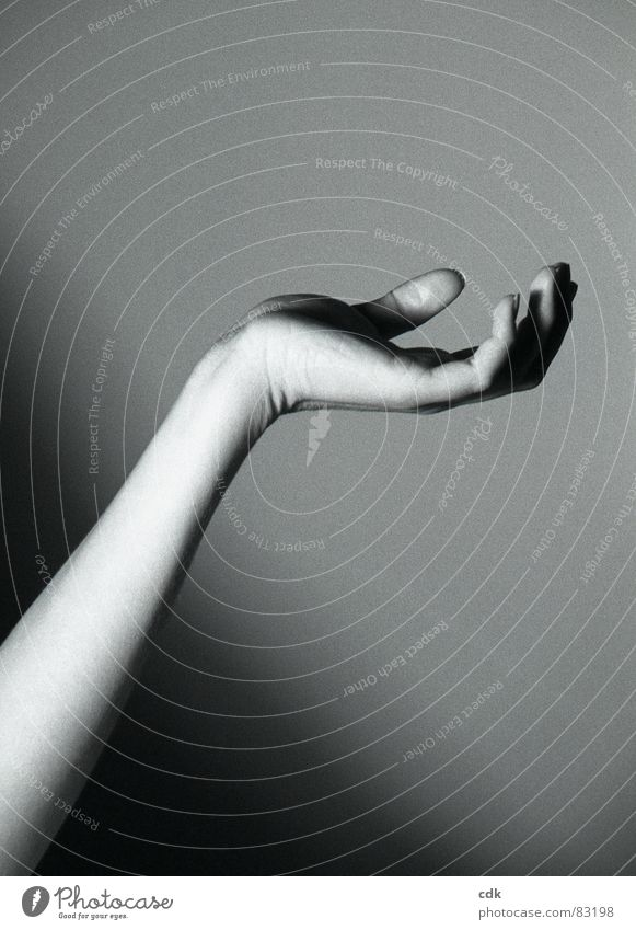 Human being Hand Dark Movement Arm Skin Fingers Posture To hold on Touch Catch Rotate Rich Take Thumb Gesture