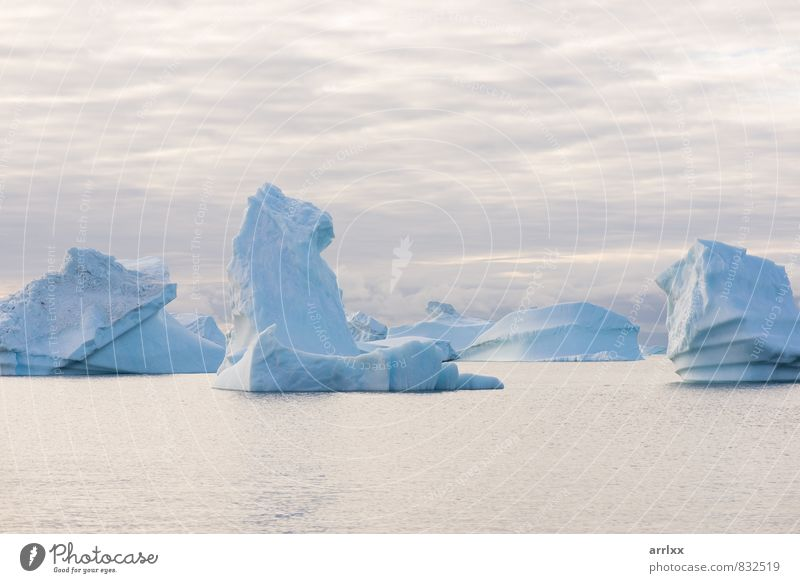 Beautiful icebergs Sky Nature Vacation & Travel Blue White Ocean Landscape Clouds Winter Dark Environment Snow Natural Climate Cool (slang) Seasons