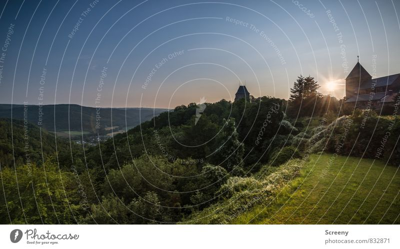 Sky Nature Vacation & Travel Plant Summer Sun Tree Calm Landscape Animal Forest Mountain Meadow Grass Germany Bushes