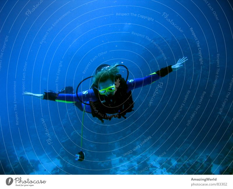deep flight Respiratory arrest Out of breath Aquatics Infinity Diver Ocean Egypt Emerge Air Oxygen Aquanaut Underwater photo Breathe Air bubble Hover