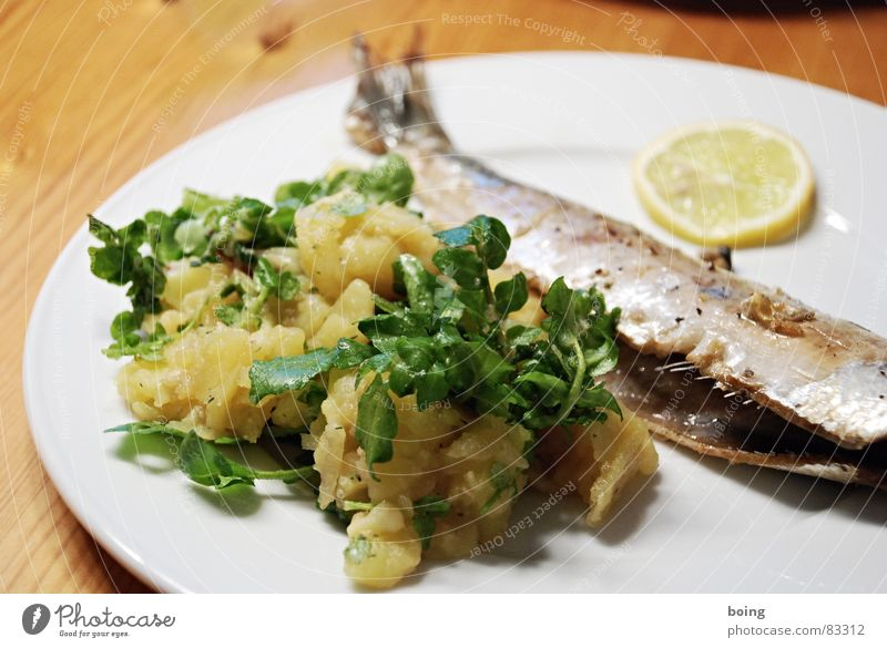 fresh fried herring without marinade with potato salad Gourmet Fish dish Herring Fish bone Lemon Watercress Portion Plate Meal Dining hall Cafeteria Fin Part