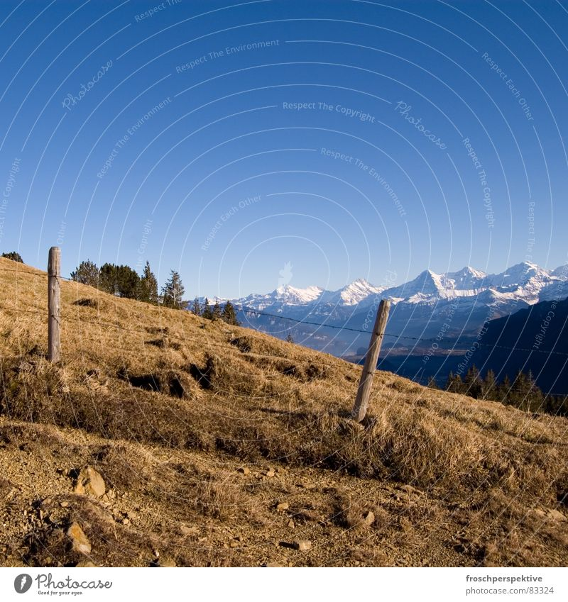 switzerland is a typical pulmex country III Mountain Stony Fence Barbed wire Vacation & Travel Switzerland Eiger Schreckhorn Panorama (View) Bernese Oberland