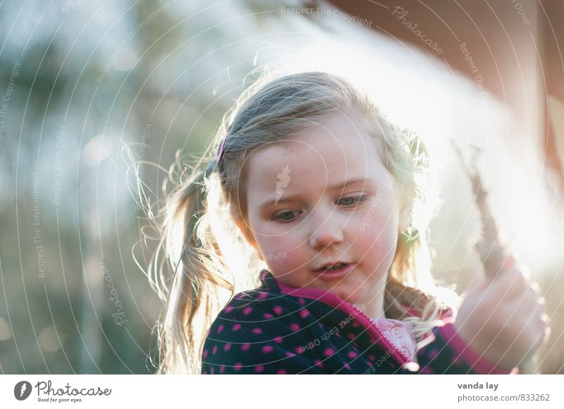 child Leisure and hobbies Playing Child Girl Infancy Face 1 Human being 1 - 3 years Toddler 3 - 8 years Free Wild Colour photo Exterior shot Copy Space left