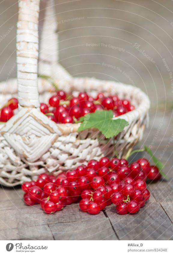 Nature White Red Healthy Eating Gray Garden Food Glittering Fruit Fresh Nutrition Delicious Organic produce Breakfast Still Life