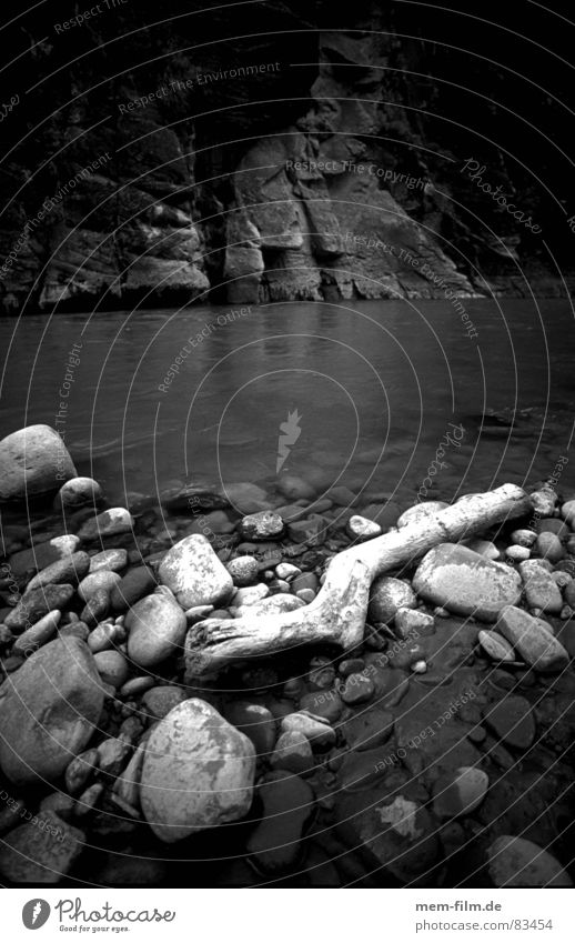 Water Wood Stone Electricity River Brook Canyon Flotsam and jetsam Riverbed Driftwood
