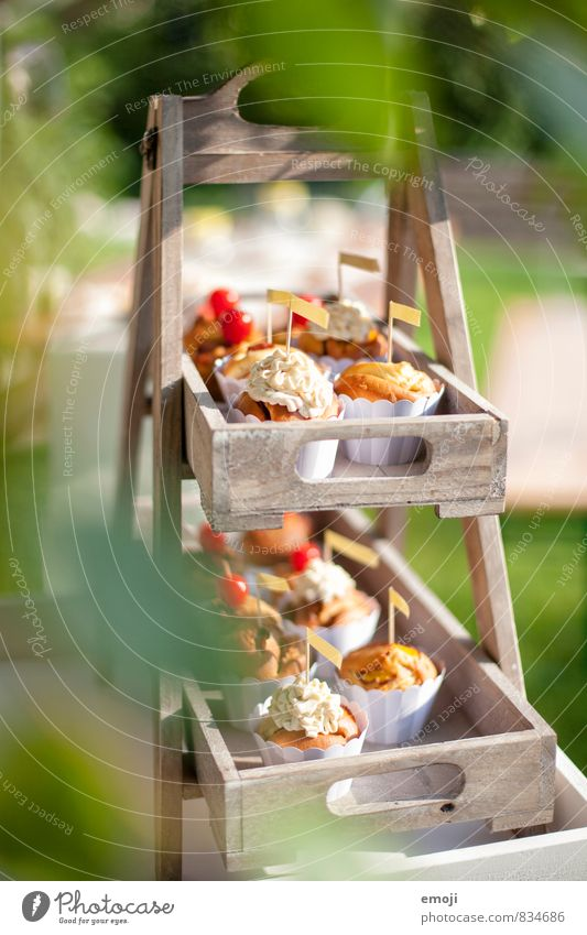 cupcakes Cake Dessert Candy Nutrition Picnic Finger food Delicious Sweet Muffin Cupcake Colour photo Exterior shot Deserted Day Shallow depth of field