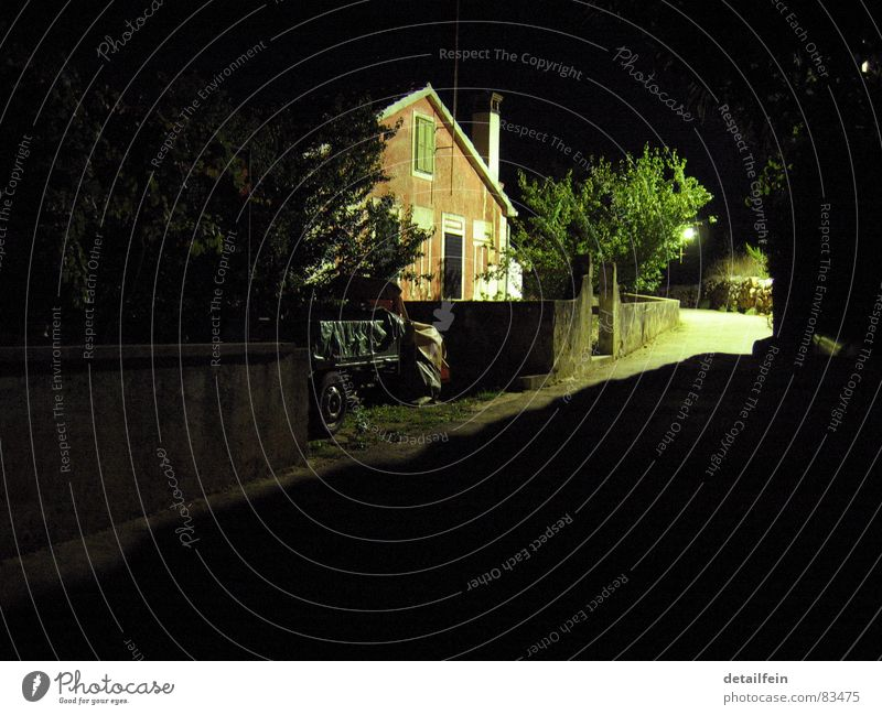 Green Tree Loneliness House (Residential Structure) Calm Dark Street Lanes & trails Car Bright Lighting Transience Village Parking Alley Crate