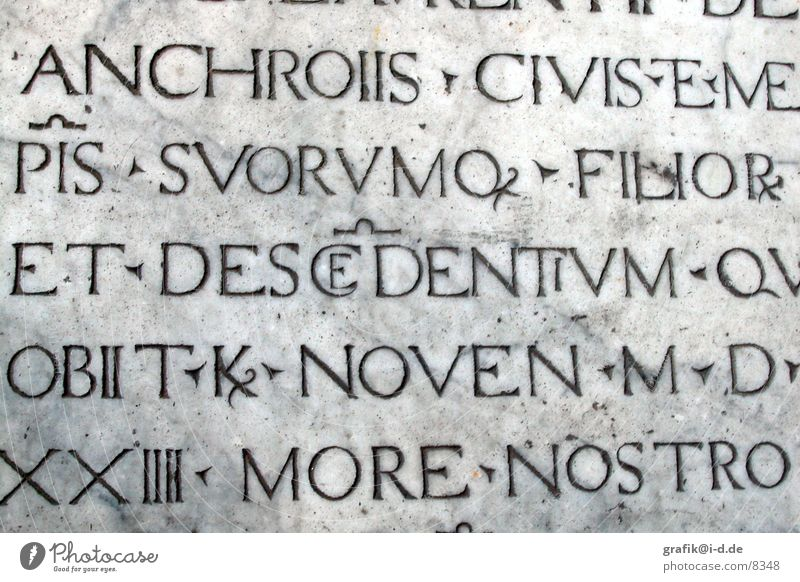 Stone Characters Italy Letters (alphabet) Inscription Photographic technology PISA study Capital letter Latin