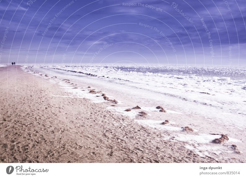 snowy beach Environment Nature Landscape Elements Earth Sand Winter Climate Climate change Ice Frost Snow Waves Coast Beach Ocean Island Fohr North Sea