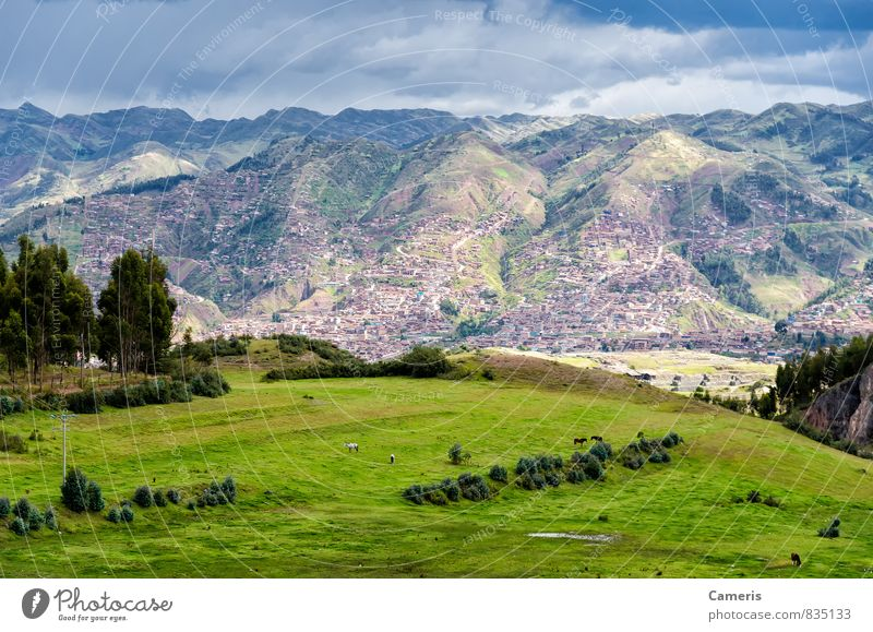 The Andes in Peru Nature Vacation & Travel Green Loneliness Landscape Far-off places Environment Mountain Natural Sports Above Wild Idyll Tourism Power Hiking