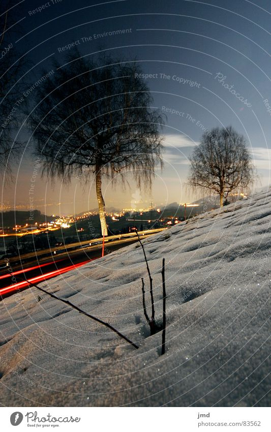 By moonlight Rear light Full  moon Long exposure Night Dark Mystic Moonlight Switzerland Wide angle Tree Branchage Crash barrier Winter mood Grass Cold Slope