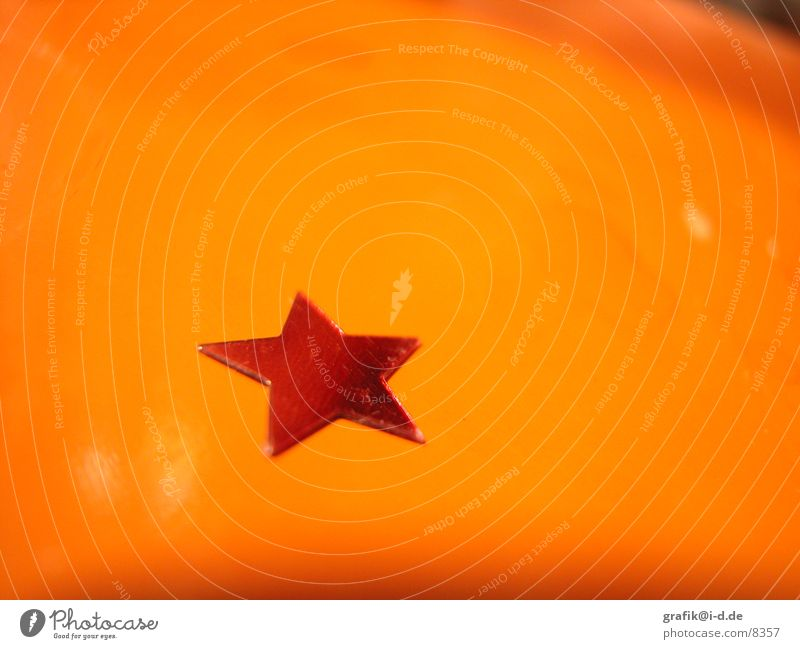 Christmas & Advent Red Winter Orange Macro (Extreme close-up) Glittering Table Star (Symbol) Desire
