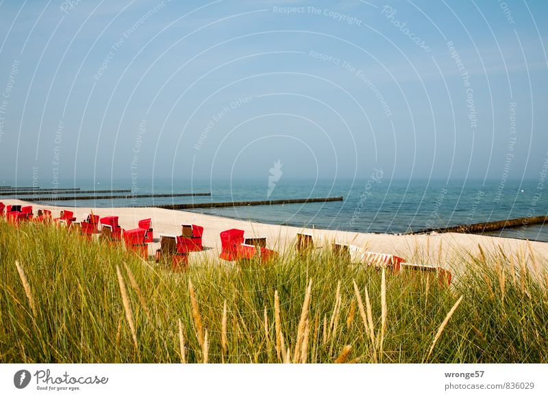 Beach chairs, quiet. Vacation & Travel Summer Summer vacation Ocean Baltic Sea holiday Blue Brown Red Beach dune Sand Water Break water Blue sky Colour photo