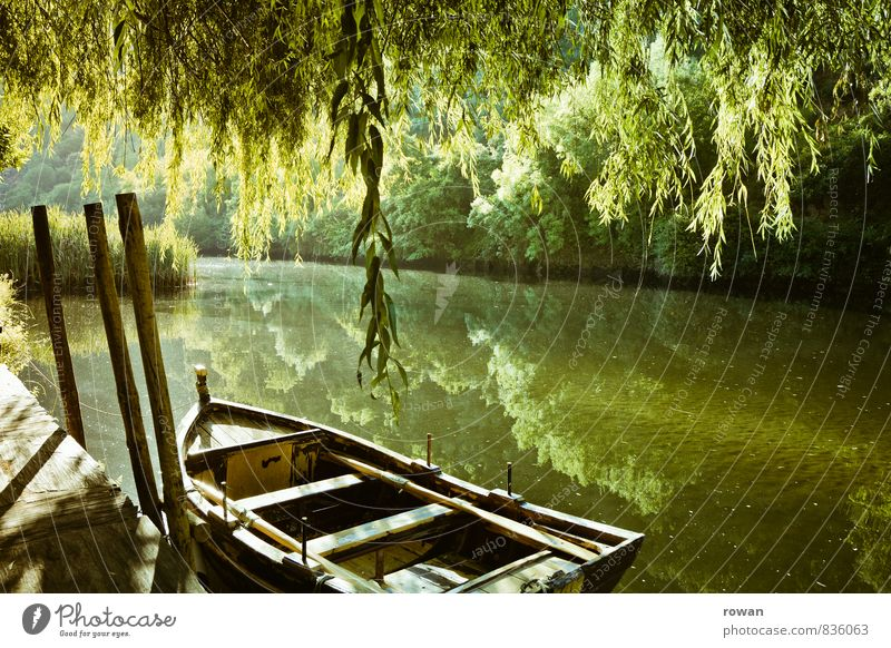rowing boat Environment Nature Landscape Tree Lakeside River bank Navigation Boating trip Rowboat Harbour Anchor Warmth Weeping willow Drop anchor Watercraft