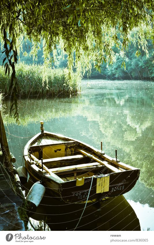 rowing boat Environment Nature Landscape Beautiful weather Lake River Rowboat Watercraft Warmth Calm Relaxation Idyll Green Weeping willow Boating trip Jetty