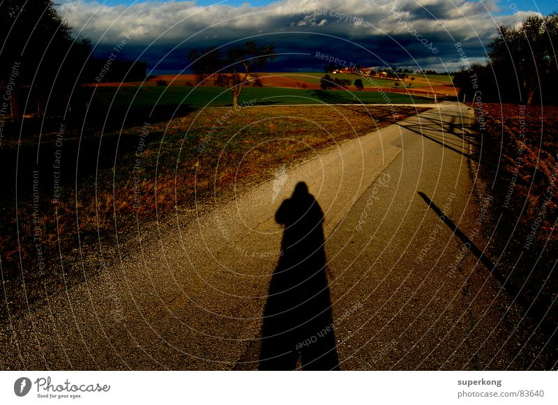 shadow To go for a walk Autumn Seasons Hiking Rain Alpine pasture Rural Country road Darken Going Early fall Shadow Summer Lanes & trails Human being Direction