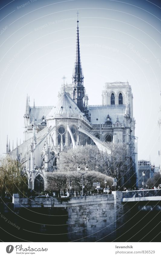 Notre Dame Tourism Trip Human being Blue Building Architecture Paris Colour photo Exterior shot Light Shadow Contrast