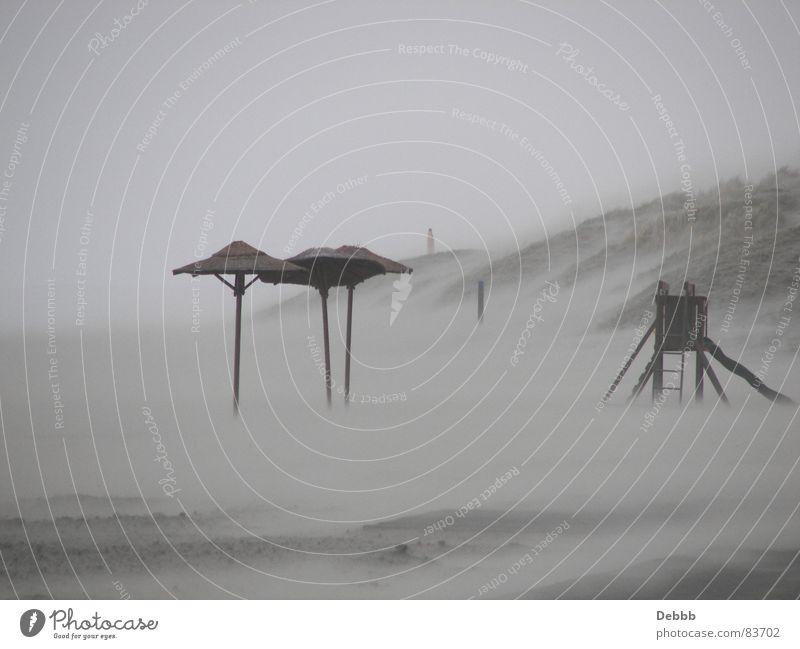 Winter Beach Sand Wind Gale